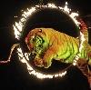 Цирки в Троицке